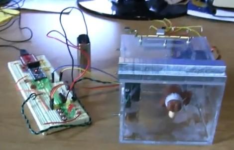 Conceptos iniciales: caja electrónica